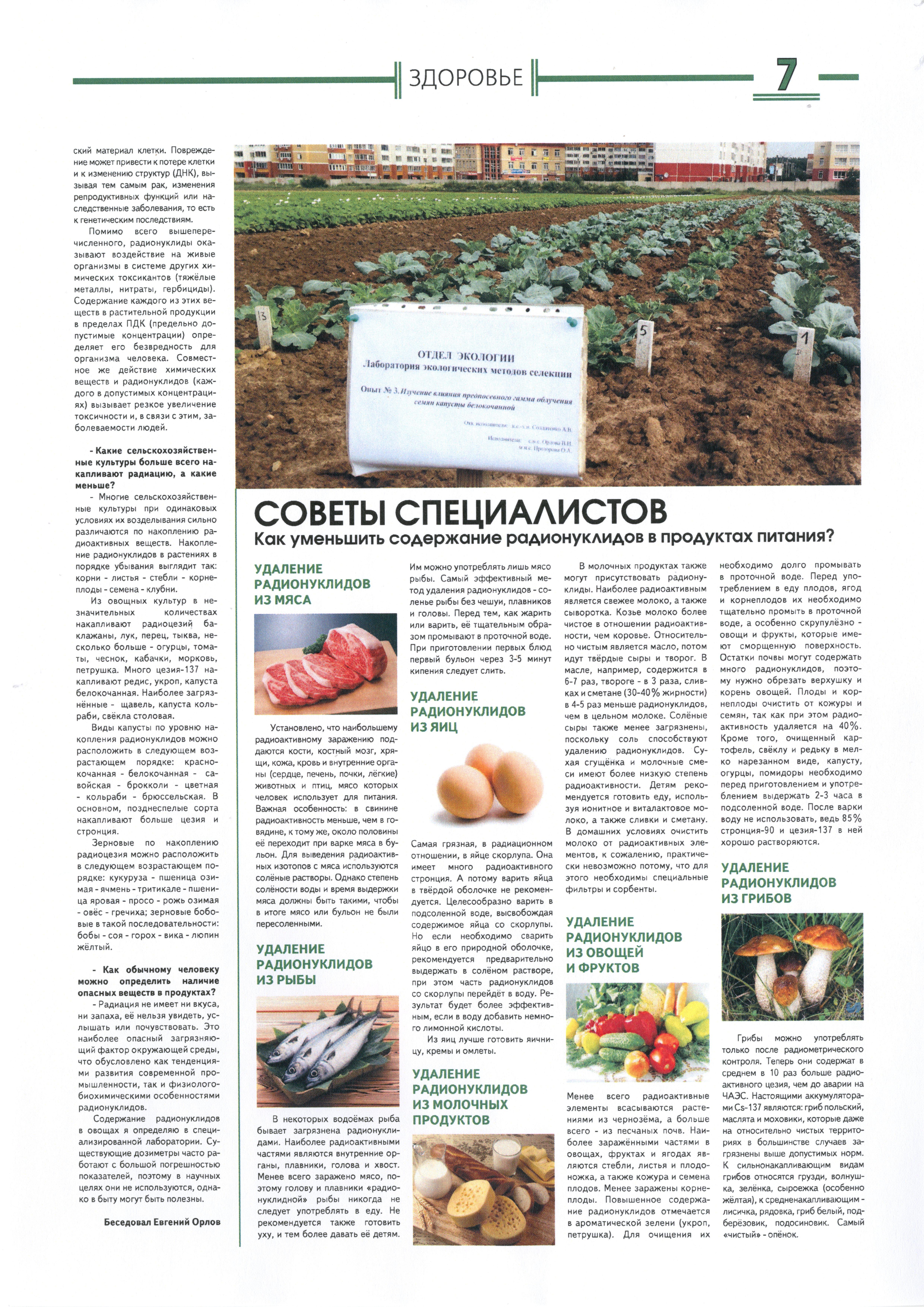Интервью по проблеме радионуклидов в овощеводстве