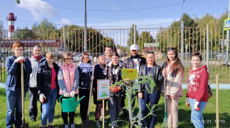 Алексей Солдатенко принял участие в акции «Наш лес. Посади свое дерево»