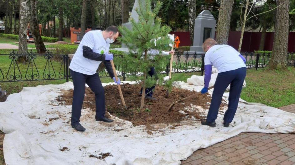Алексей Солдатенко принял участие в акции «Сад памяти»