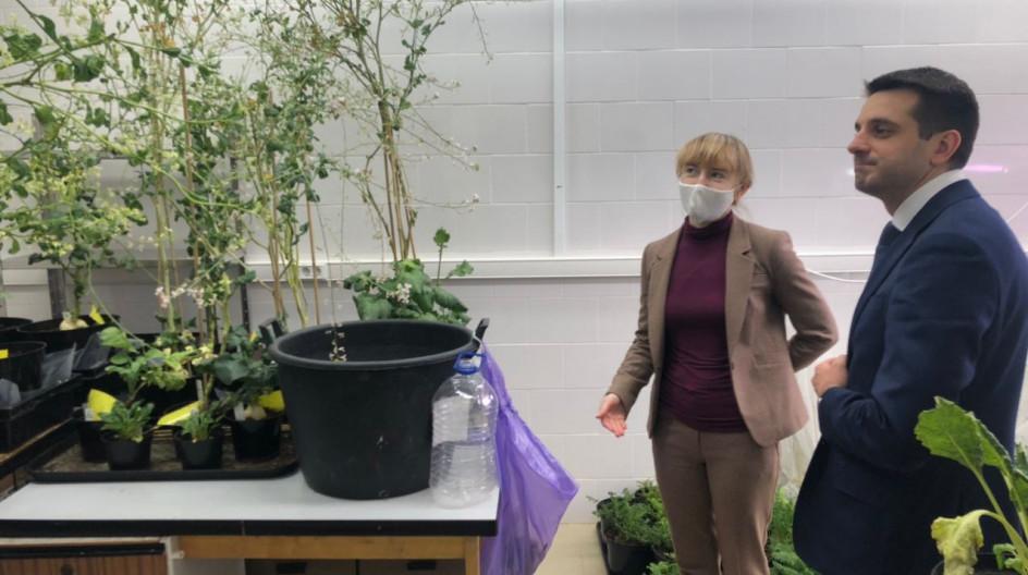 Федеральный научный центр овощеводства в Одинцове начнет сотрудничество с сельскохозяйственными предприятиями Воронежской области