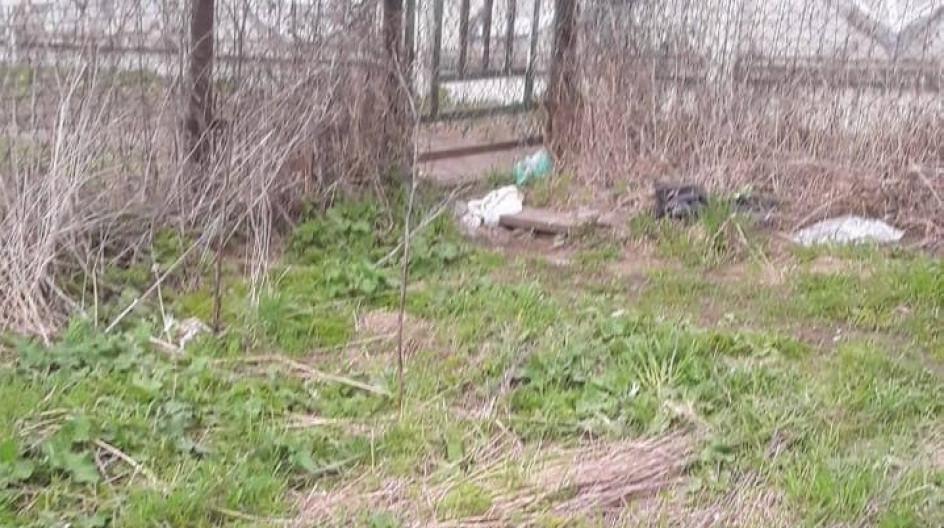 Алексей Солдатенко организовал и провел субботник на берегу пруда в поселке ВНИИССОК