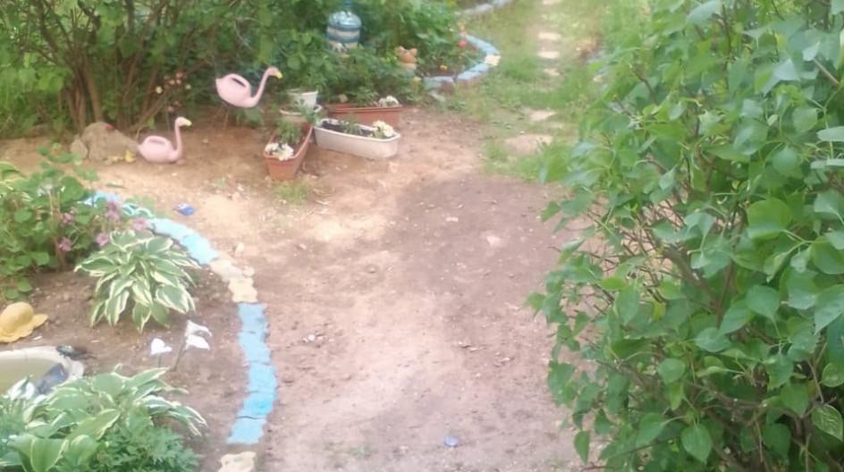 Алексей Солдатенко получил благодарность от жительницы поселка ВНИИССОК за предоставление рассады цветов для палисадника